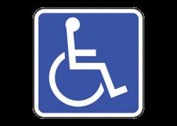 Handicap Decal