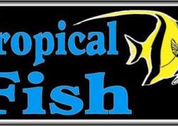 Tropical Fish Sign